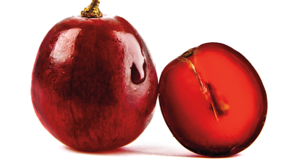 Grape skin 1